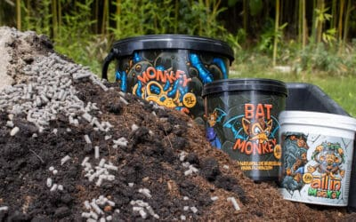 Elabora tu propio Super Soil con productos Monkey Soil ¡Presentamos nuestra receta de Super Soil definitiva con productos Monkey Soil!